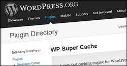 wp-super-cache-seo-plugin